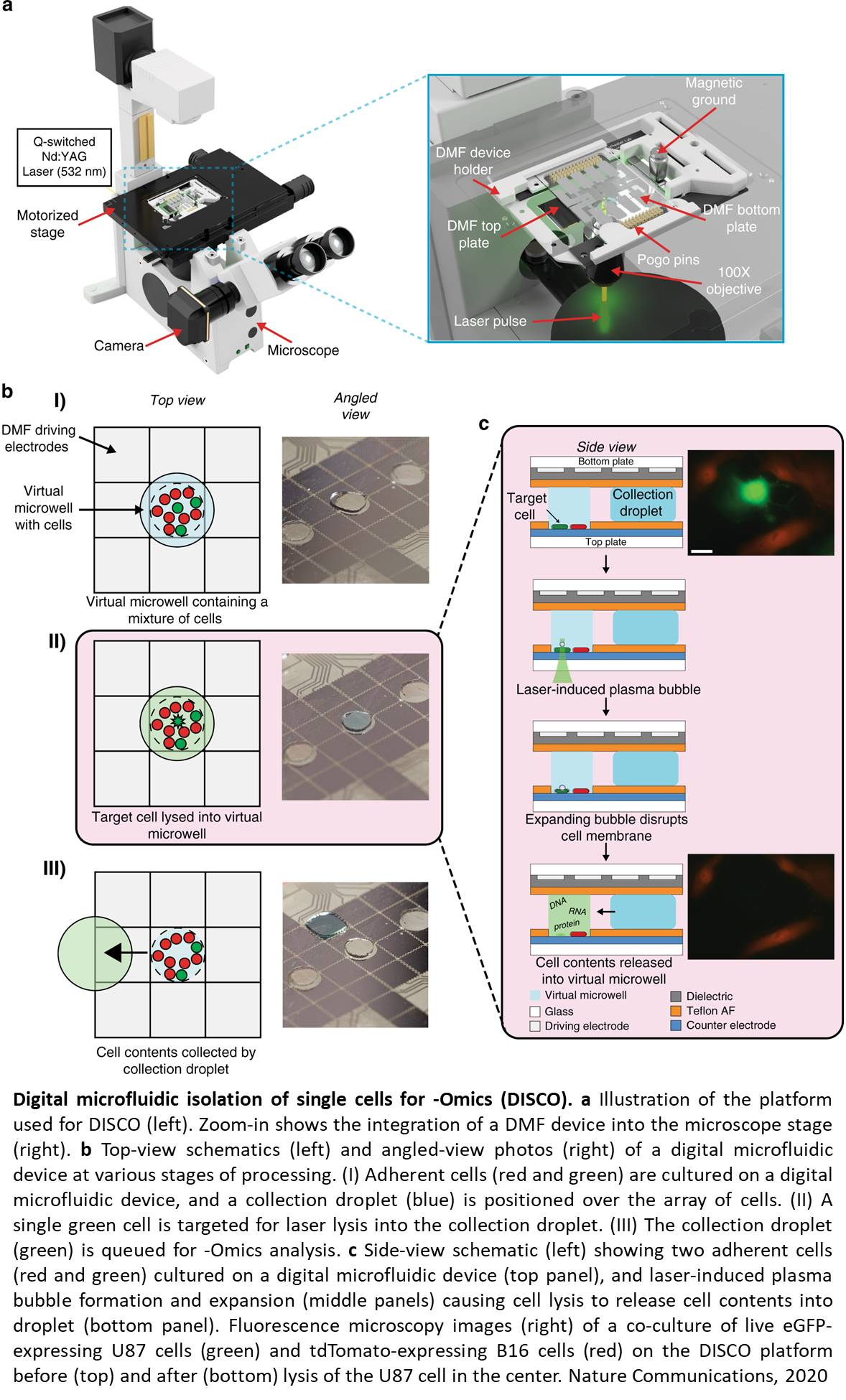 Digital microfluidic Isolation of Single Cells for Omics (DISCO)
