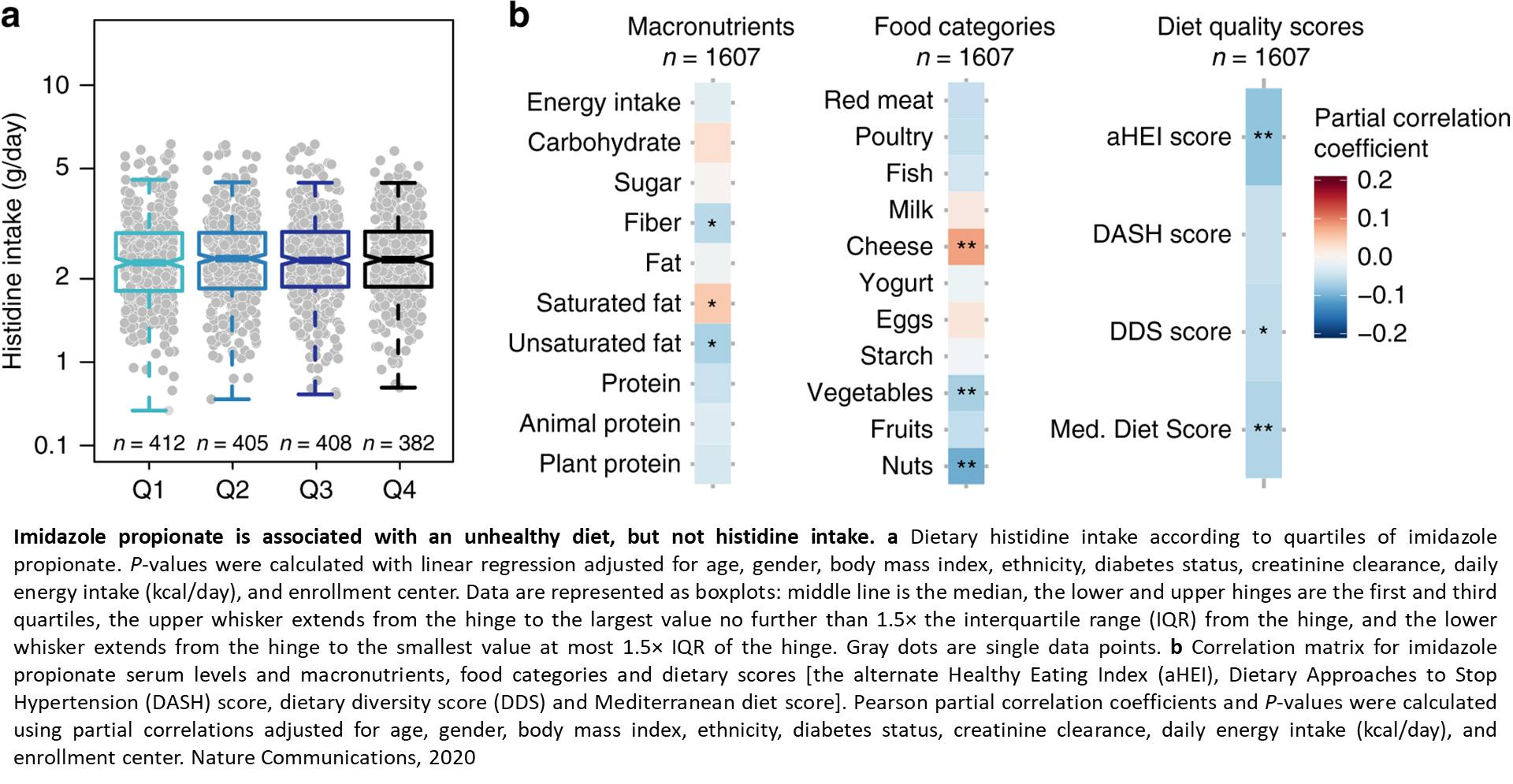 A gut microbial metabolite implicated in the progression of diabetes