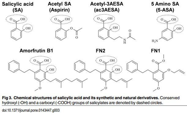 Aspirin targets key protein in neurodegenerative diseases
