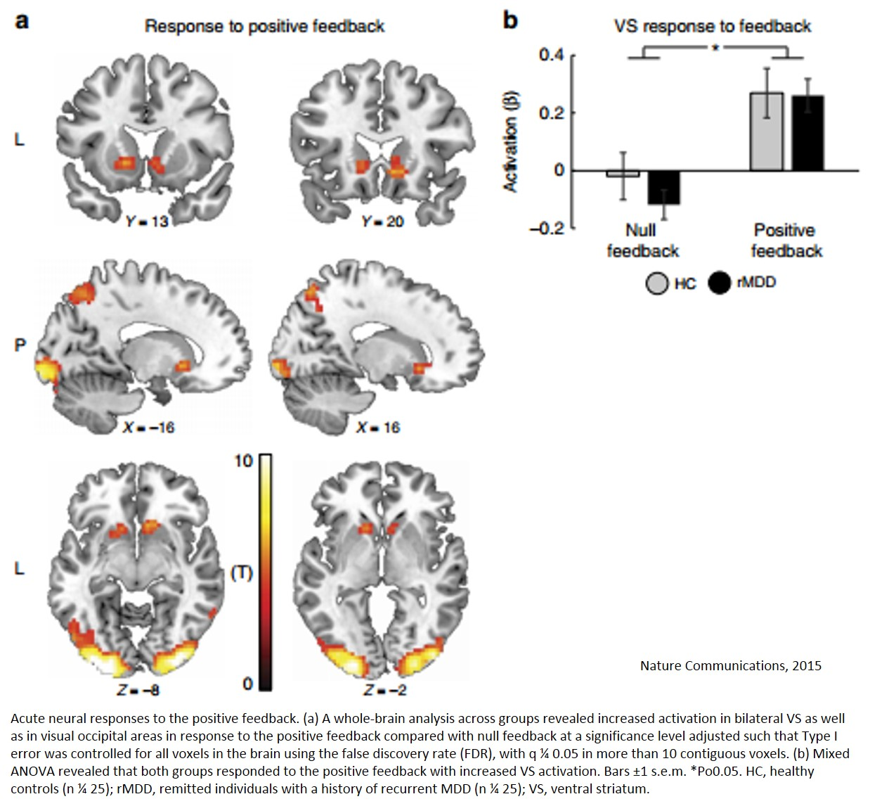 Positive mood related brain pathways identified!