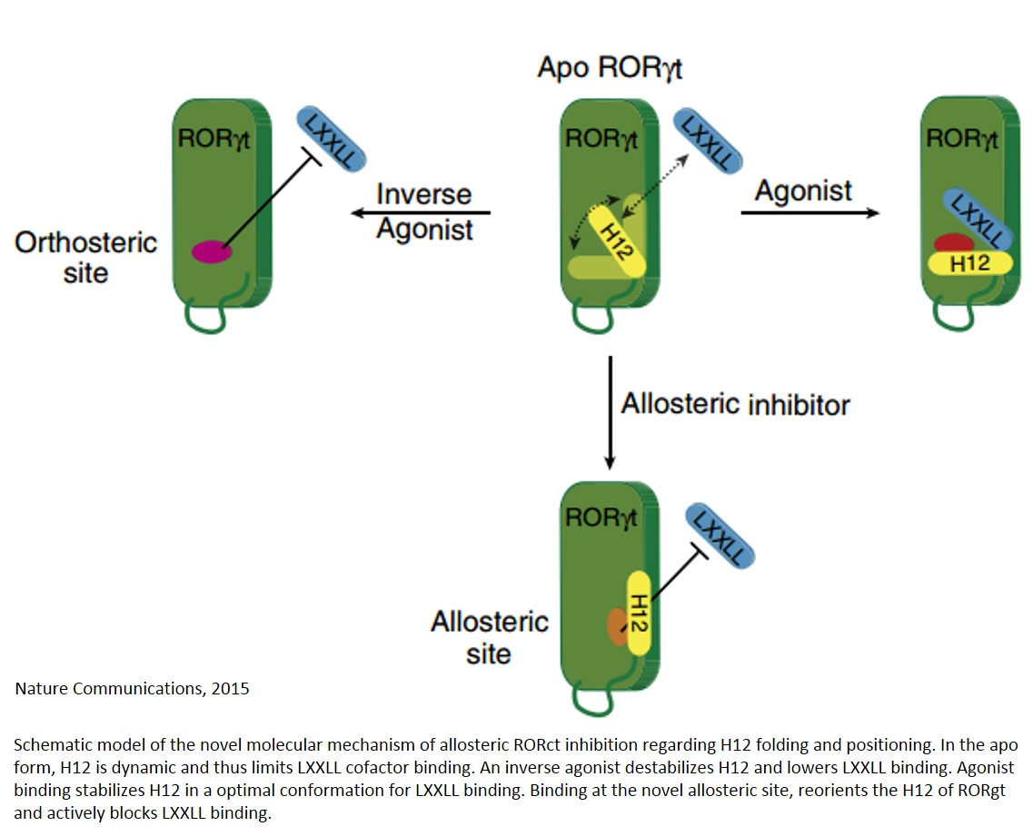 Identification of an allosteric binding site for nuclear receptors