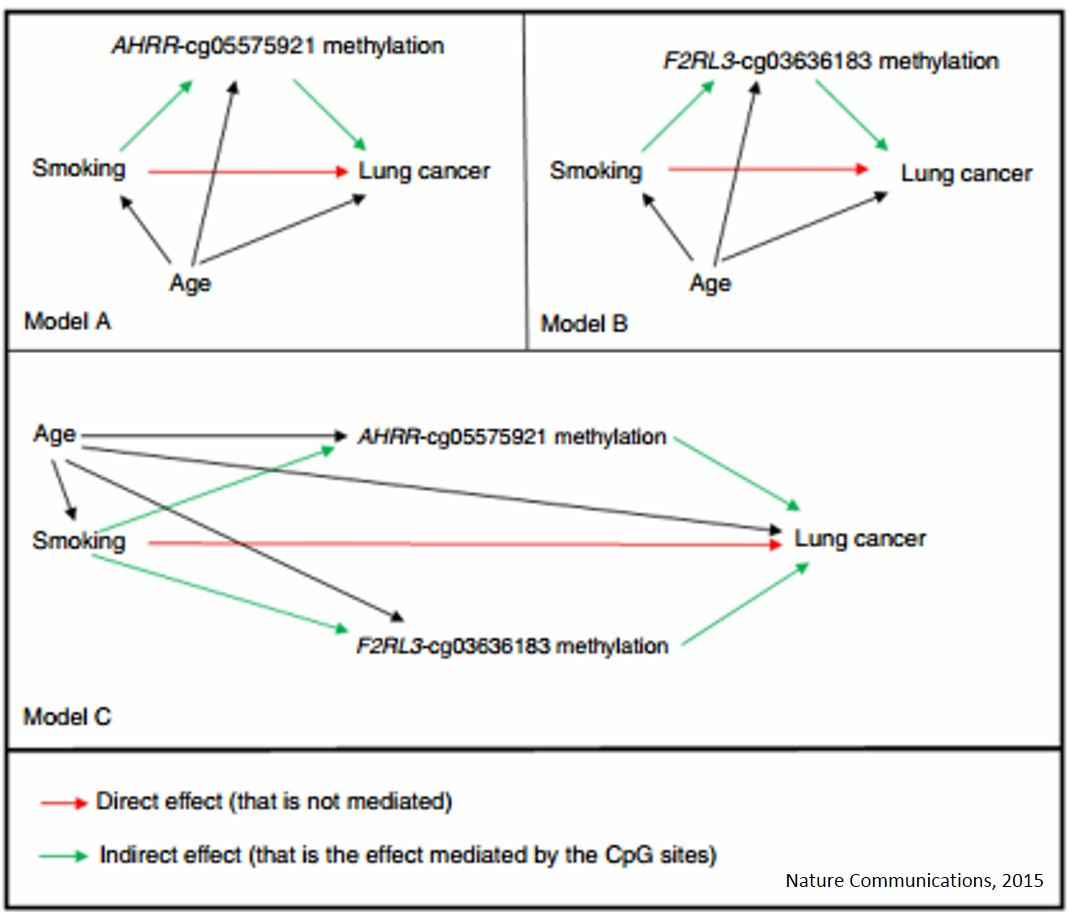 Hypomethylation of smoking-related genes is associated with future lung cancer
