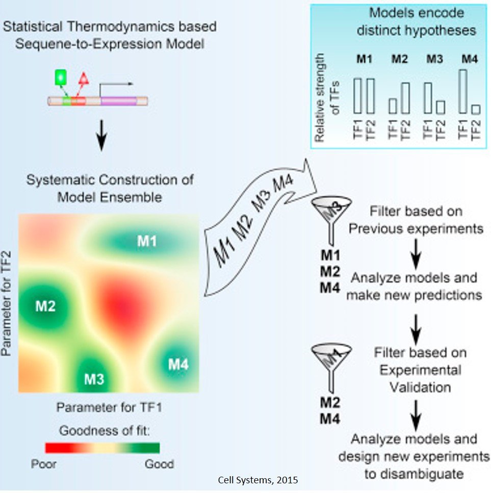 Thermodynamic Modeling of Gene Expression from Sequence Data