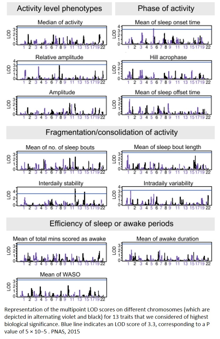Genetic link between bipolar disorder and sleep