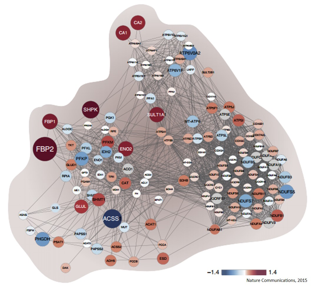 Proteomic maps of breast cancer subtypes