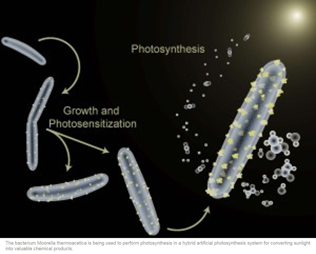 A New Trick for Artificial Photosynthesis