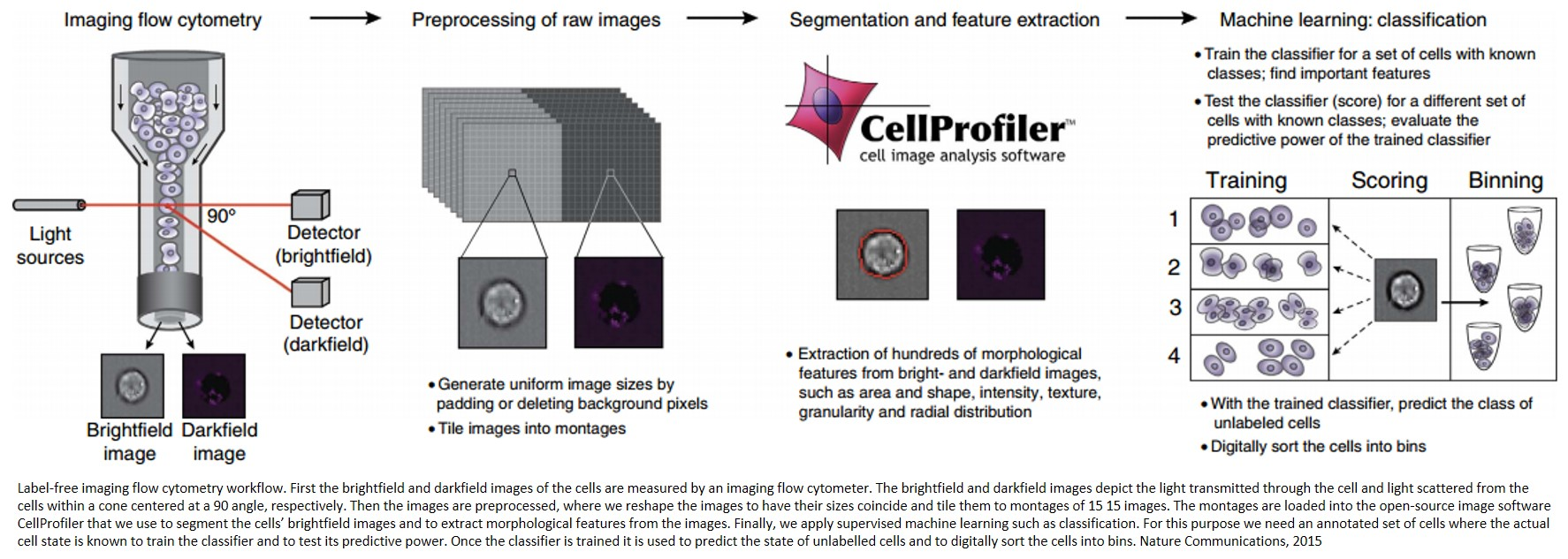 Label free detection using imaging flow cytometry