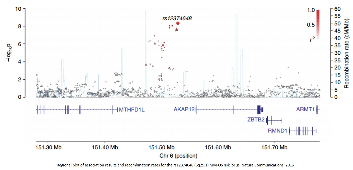 Gene variation is associated with survival in multiple myeloma patients