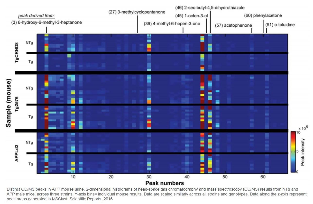 Odor biomarker for Alzheimer's disease