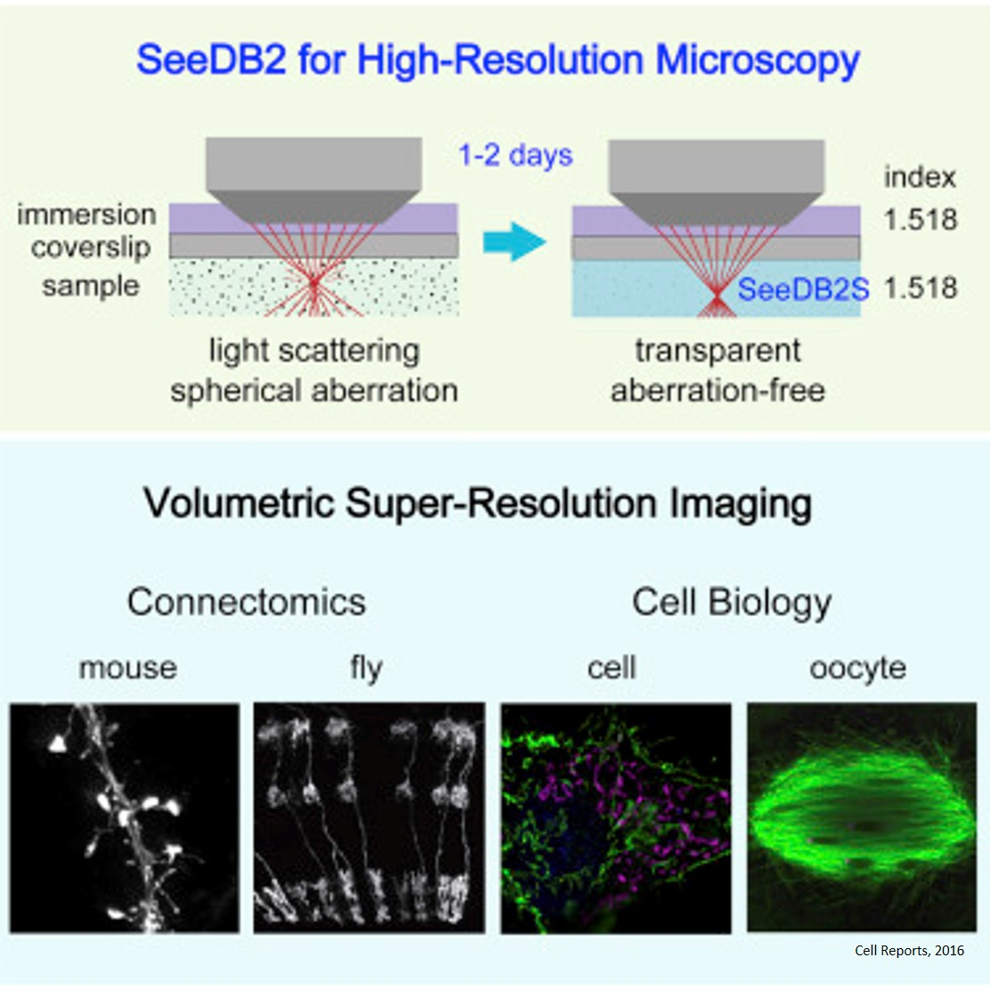 Super-clear synapses at super resolutions
