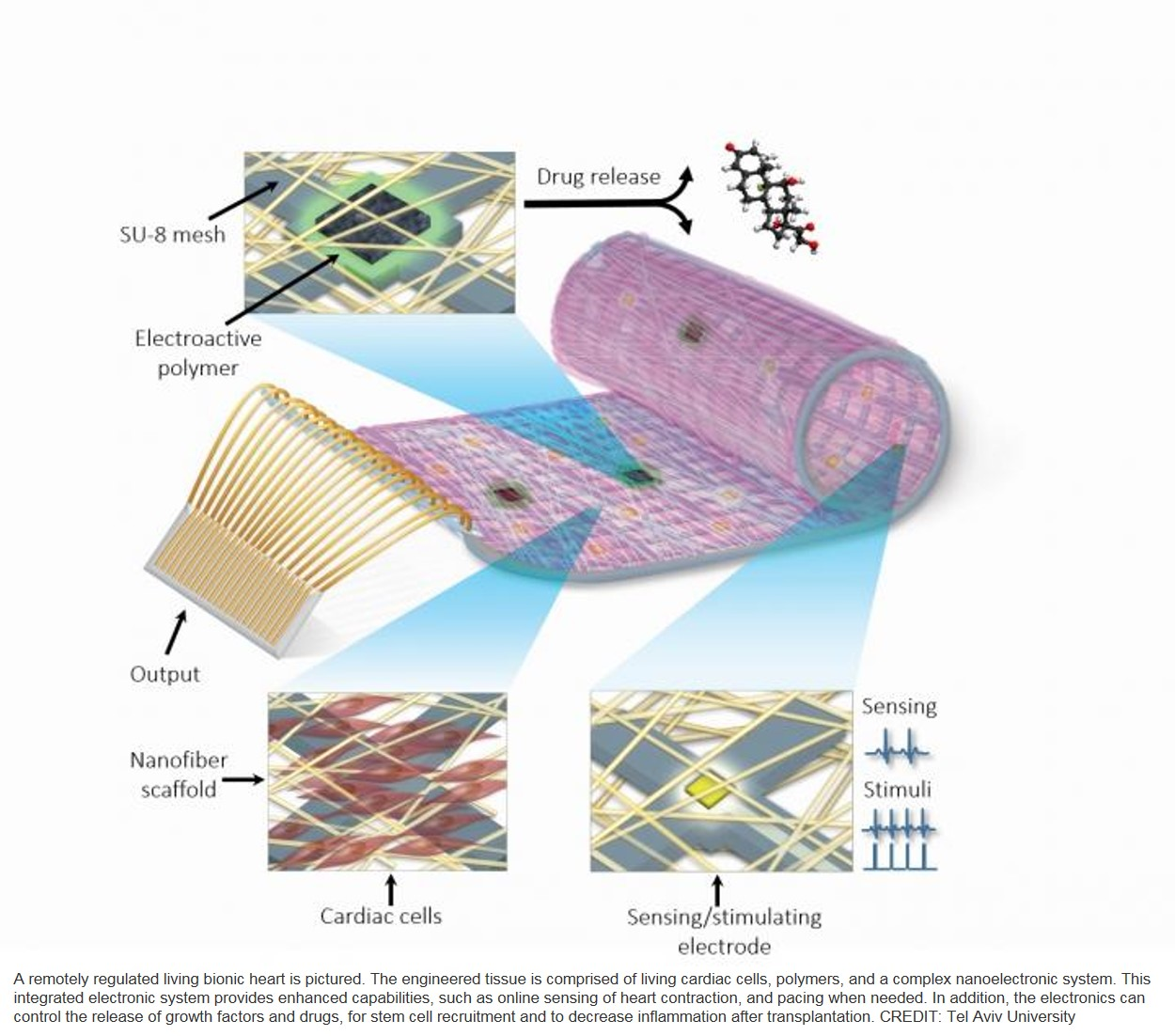 Cardiac patch with electronics to treat and deliver drugs to diseased heart