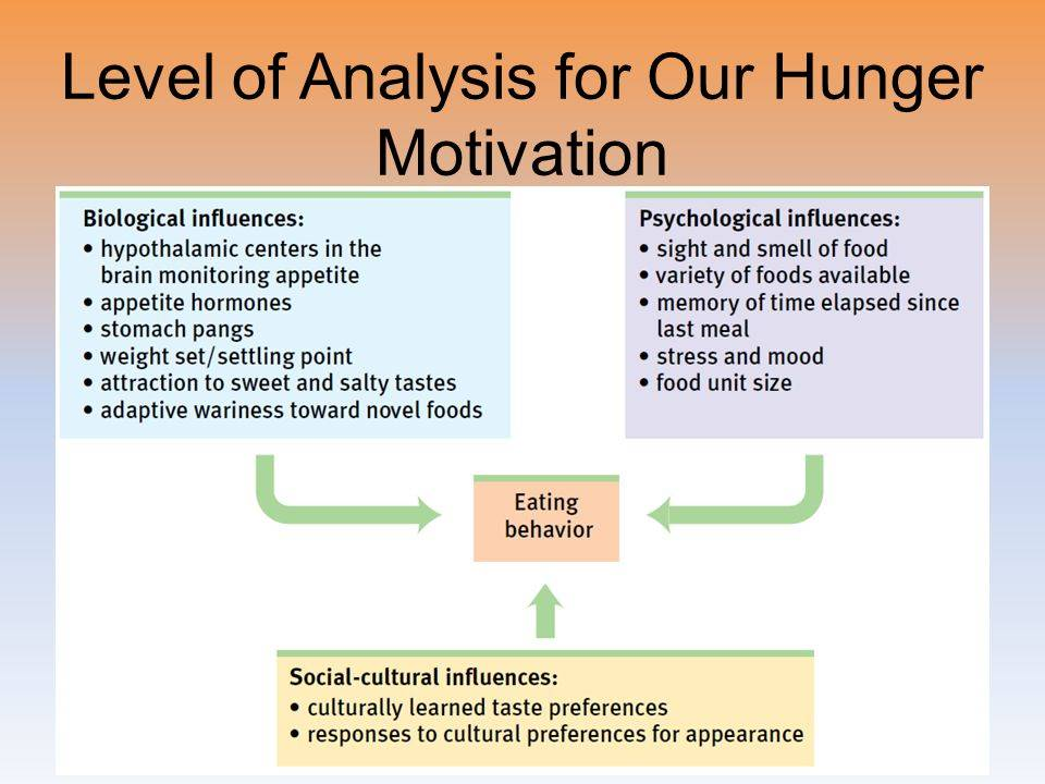 Hunger may be more motivating than thirst, anxiety, or fear