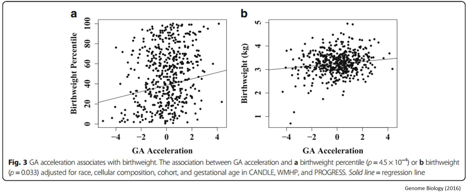 An epigenetic clock for gestational age at birth