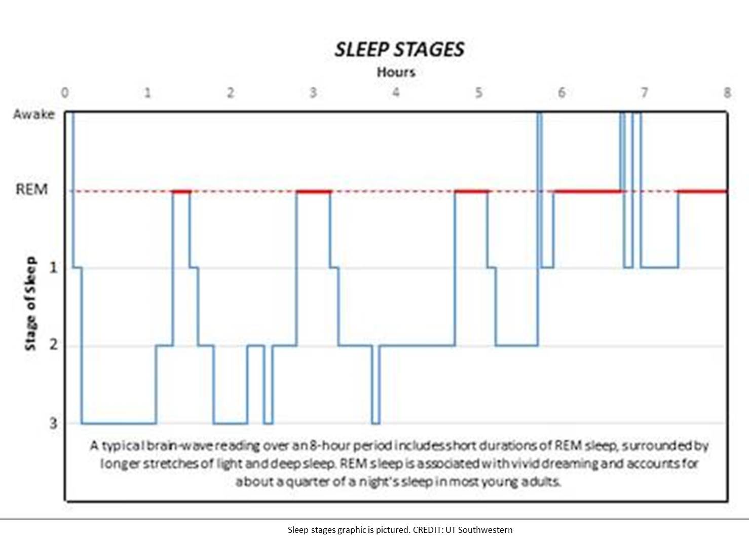 Two genes regulating sleep in mice identified!