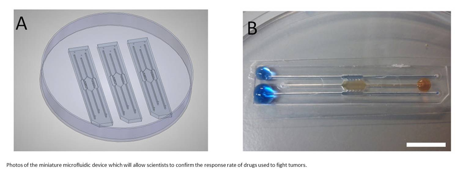 Microfluidic device shows which drugs perform best against tumors