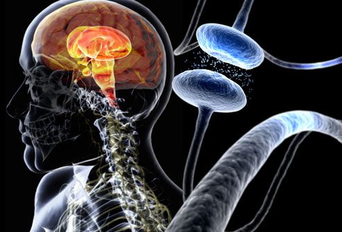 Scientists  correct motor symptoms in Parkinson's