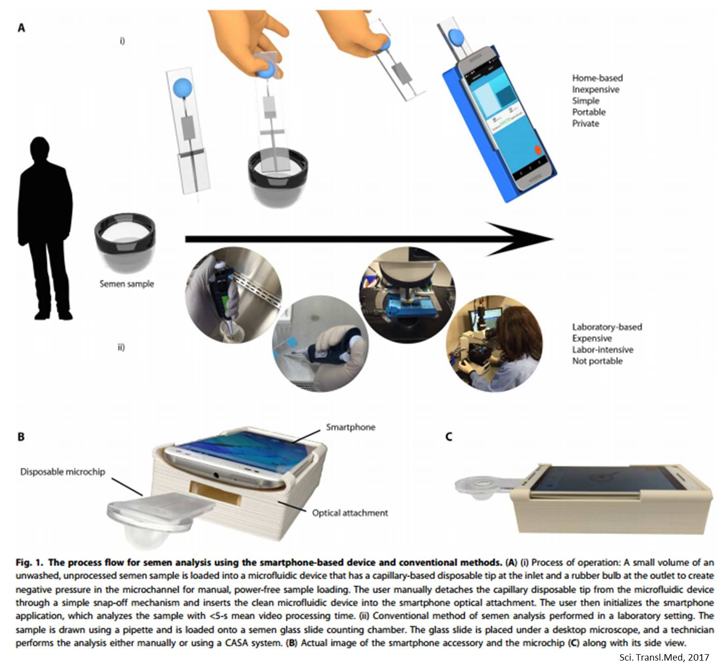 A rapid, automated and inexpensive fertility test for men