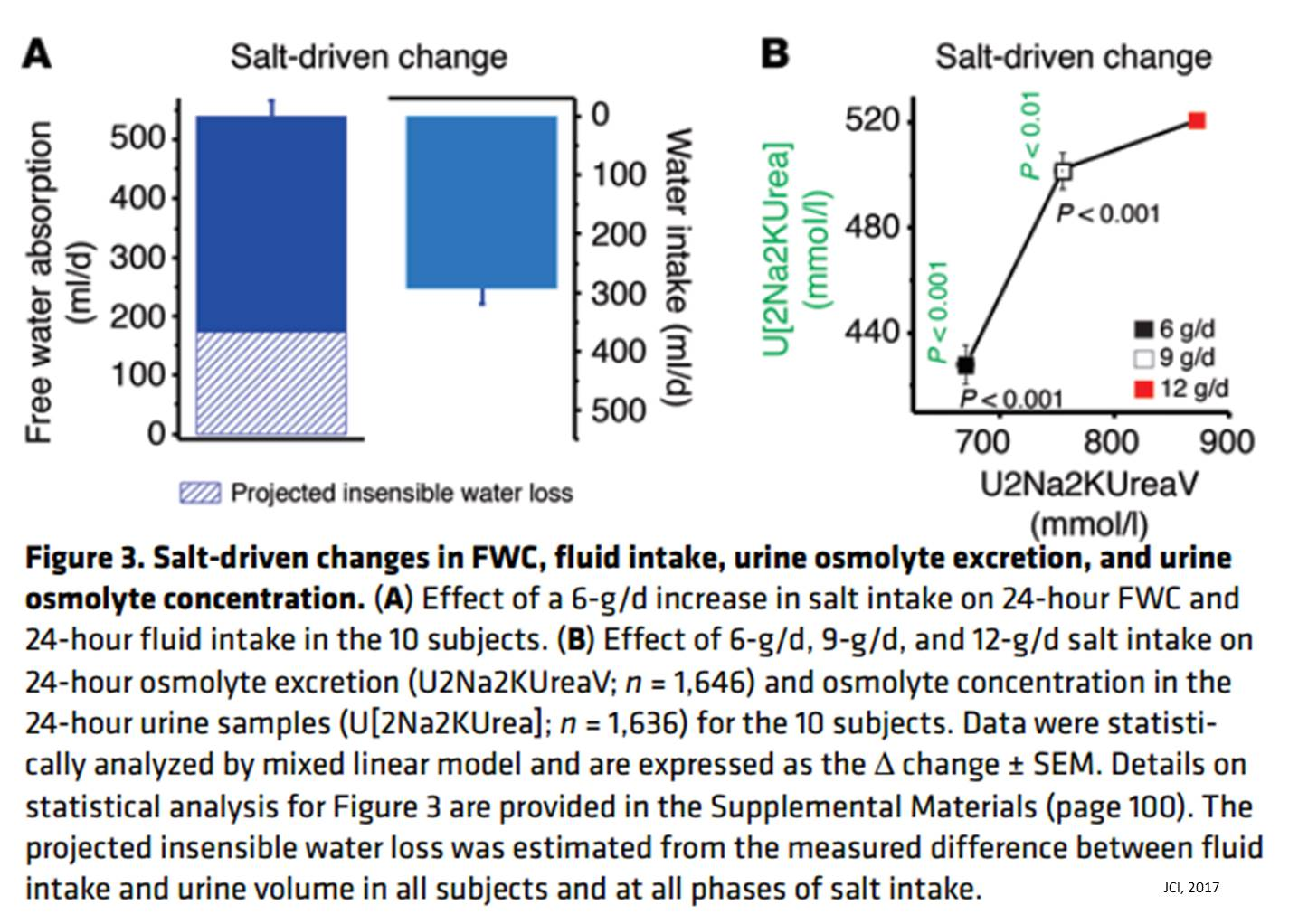 Increased salt consumption induces body water conservation and decreases fluid intake