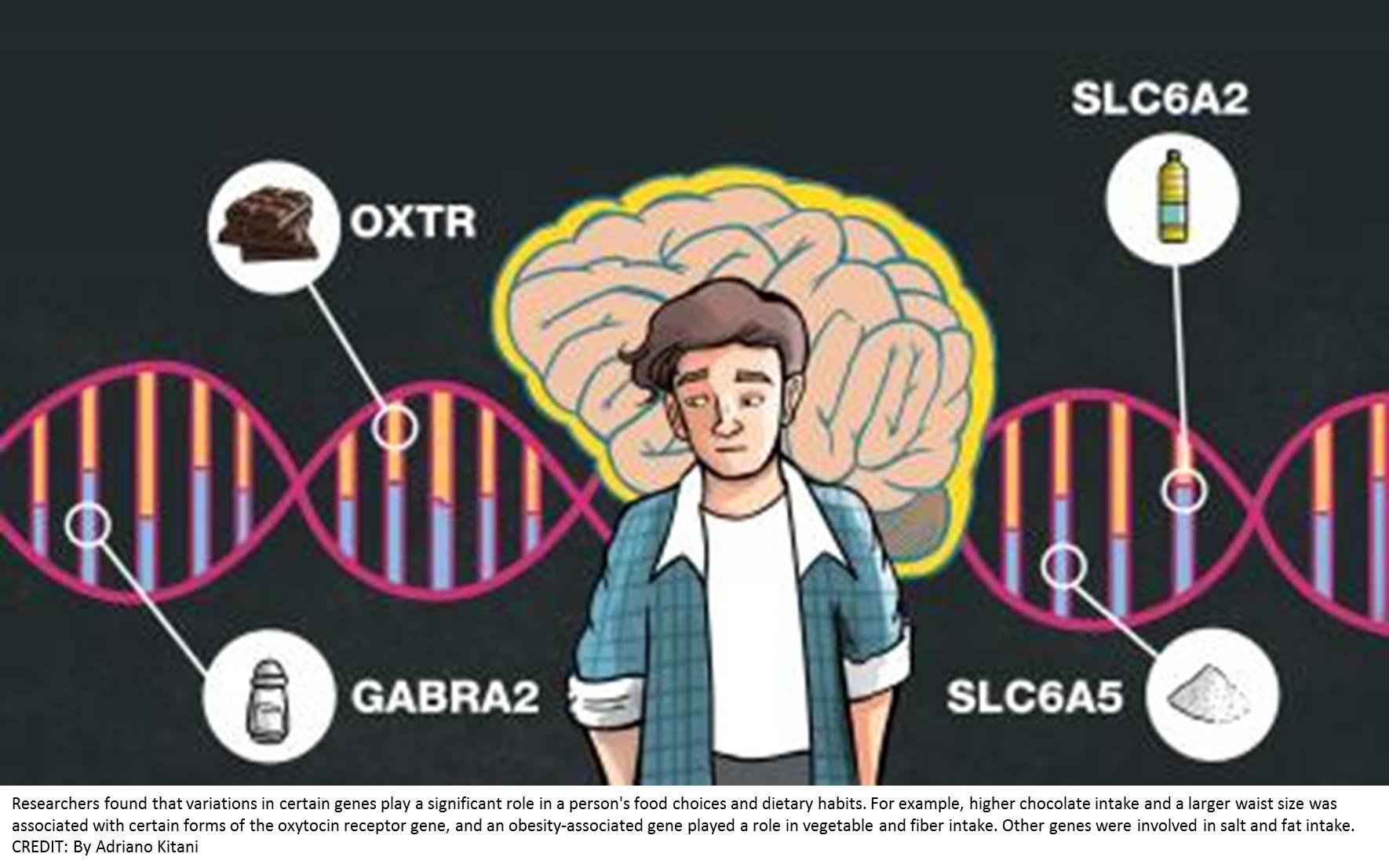 Could genetics influence what we like to eat?