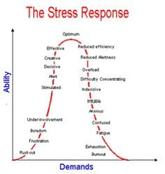 Stress and learning in infants