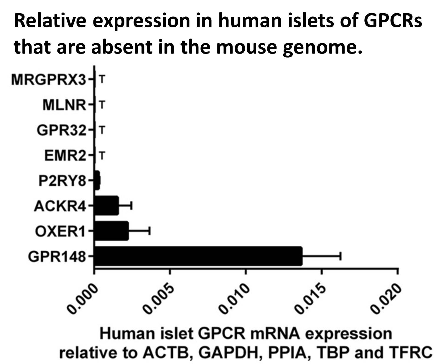 The differences between mice and human protein expression in islets