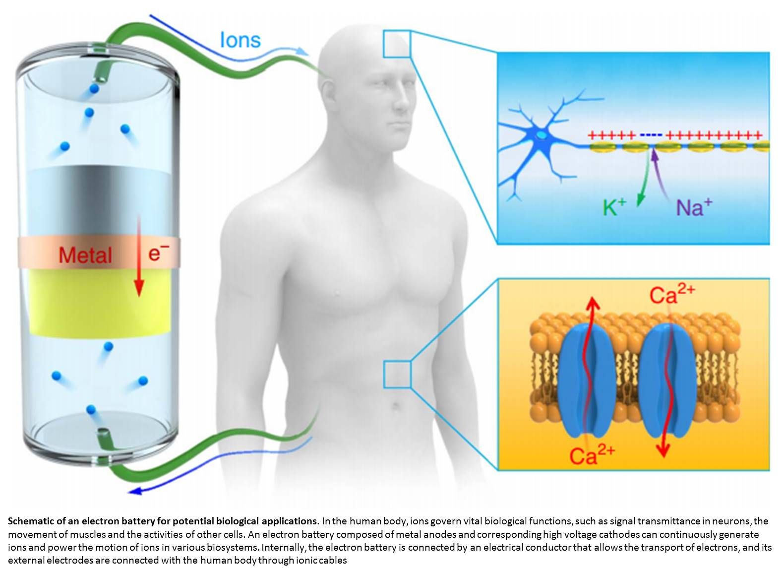 First bio-compatible ion current battery invented!