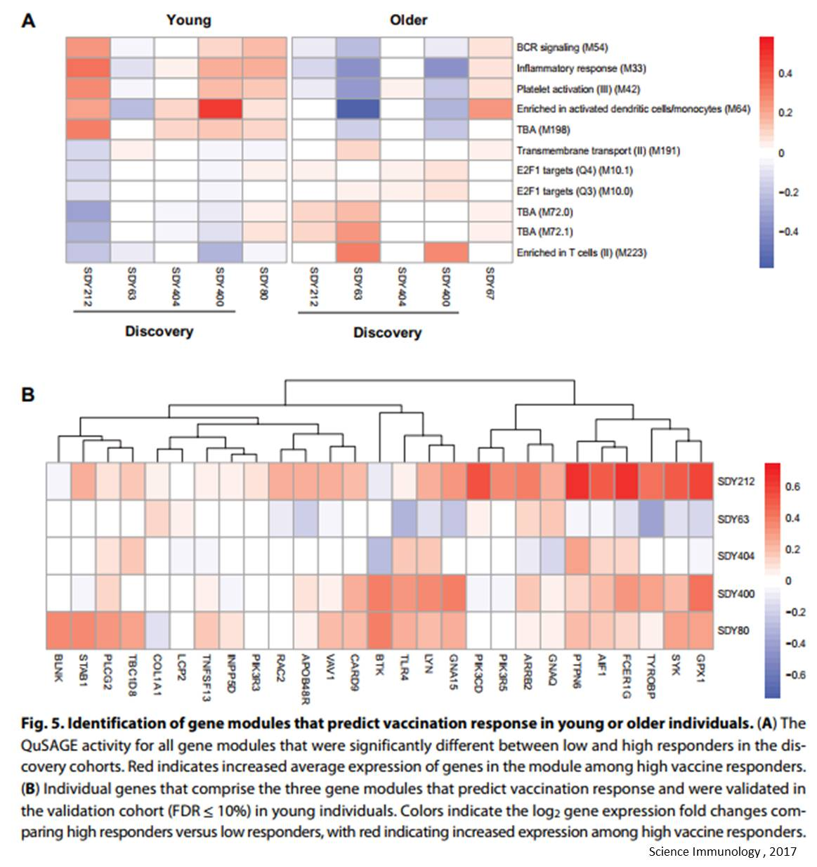 Set of 9 genes predict flu response!