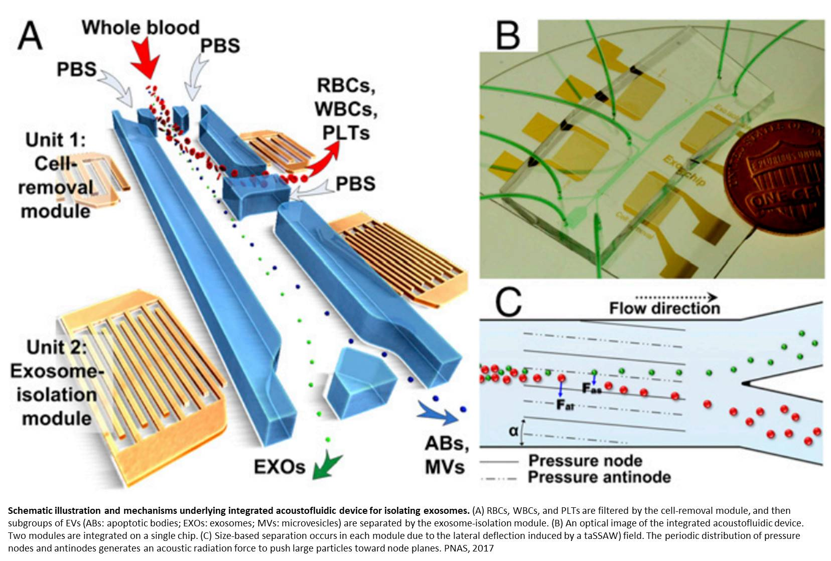Exosome isolation from whole blood using sound waves and microfluidics