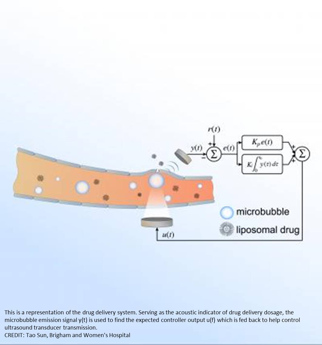 Controlled opening of the blood-brain barrier with precision