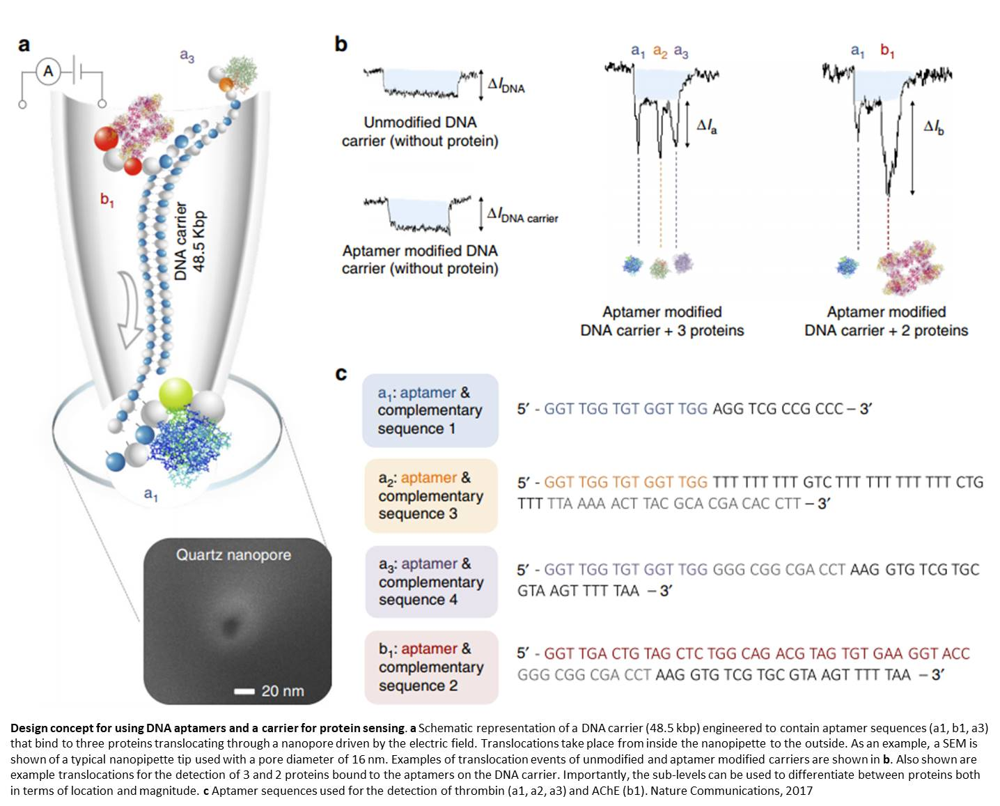Nanopore detection system to screen biomarkers in serum using DNA aptamers