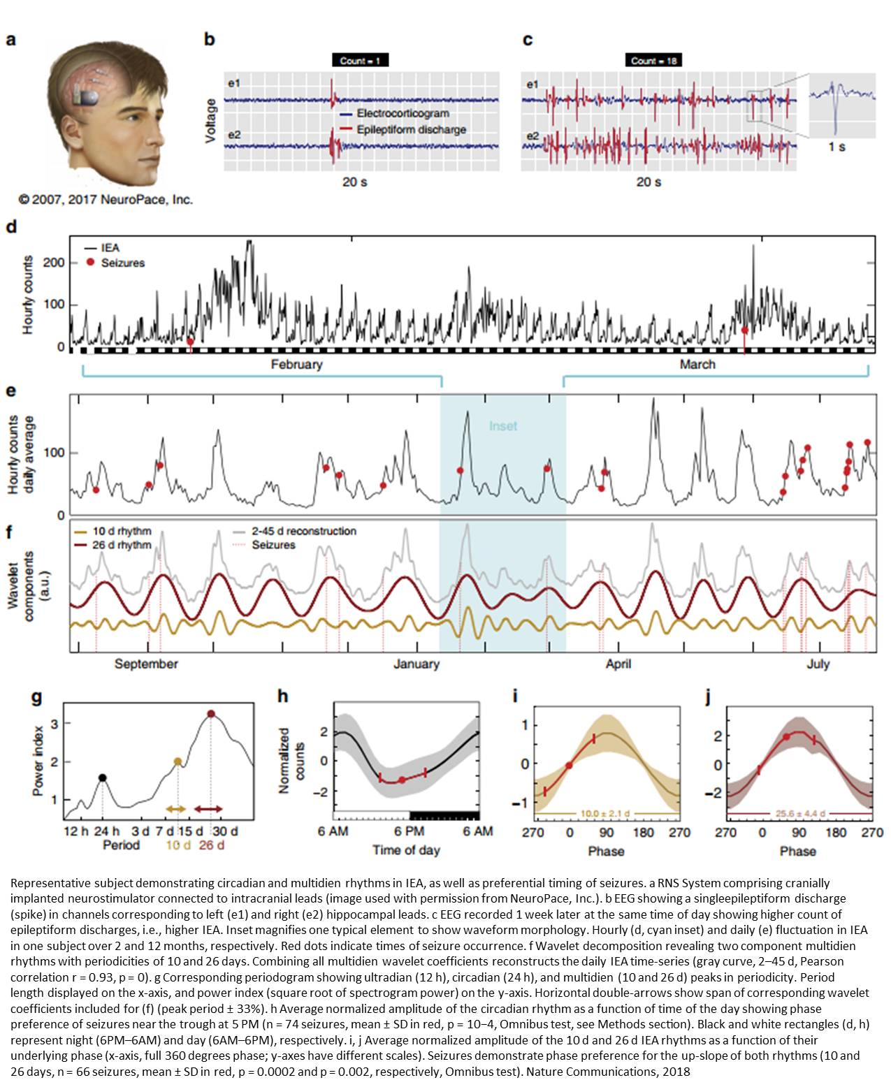 Monthly brain cycles predict seizures in patients with epilepsy