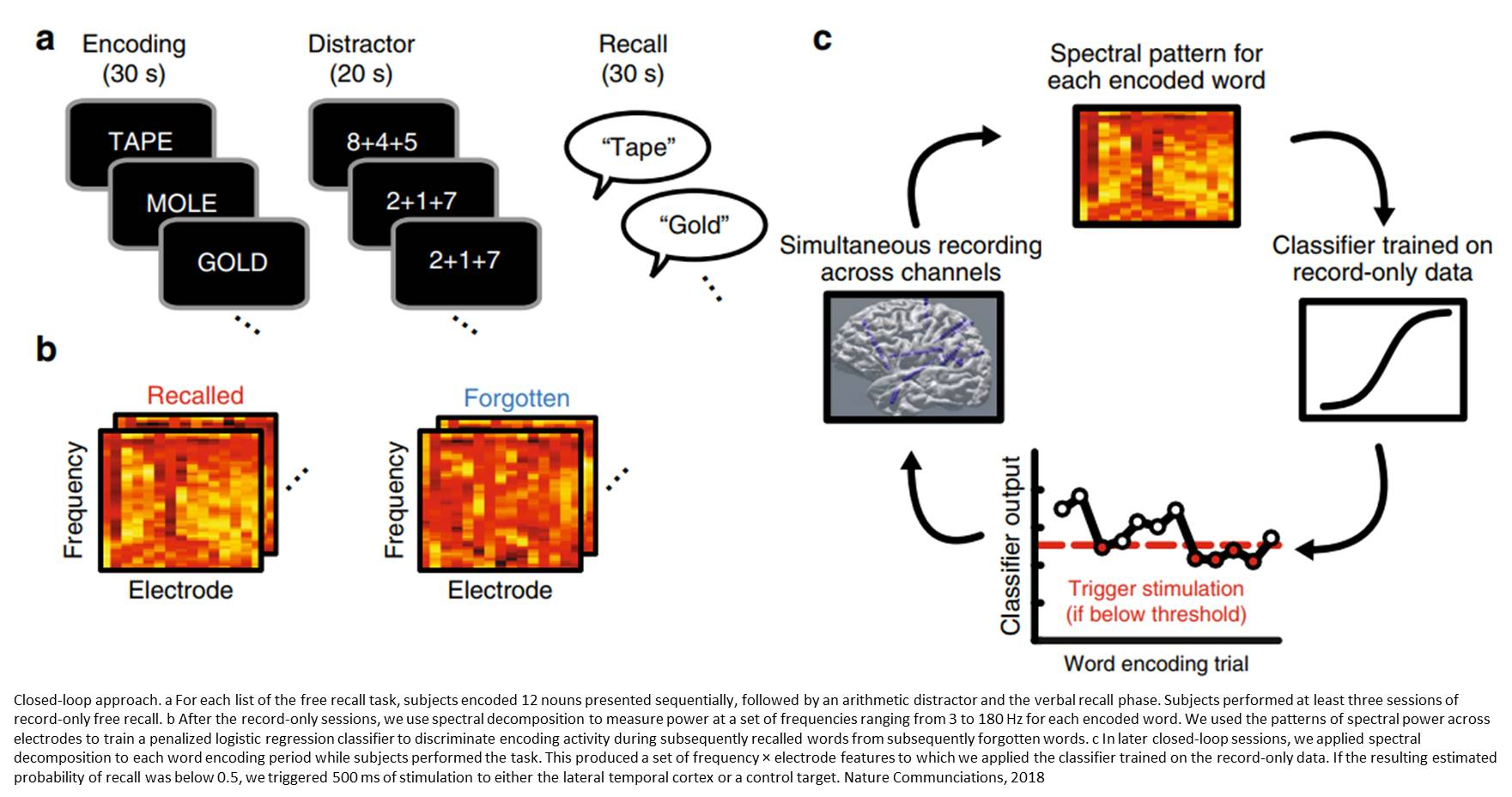 Precisely timed brain stimulation improves memory