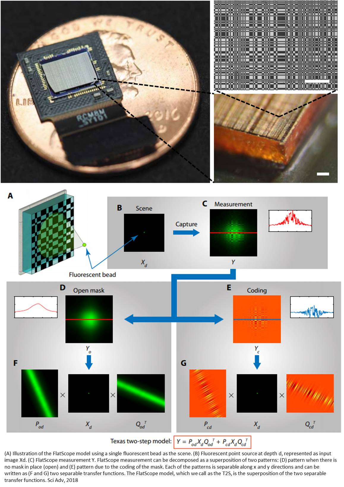 Lens-free fluorescent microscope