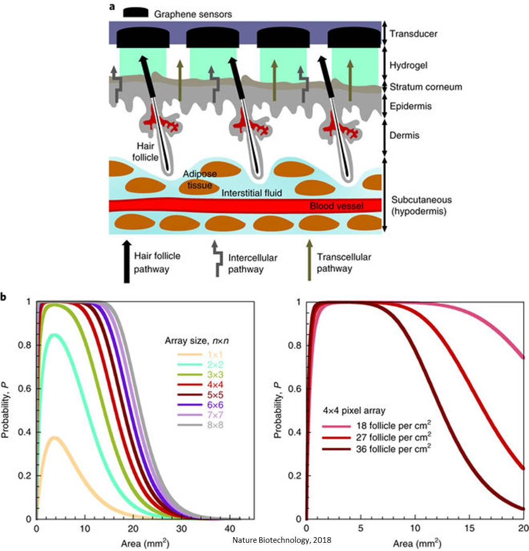 A non-invasive, adhesive patch to monitor blood gluose