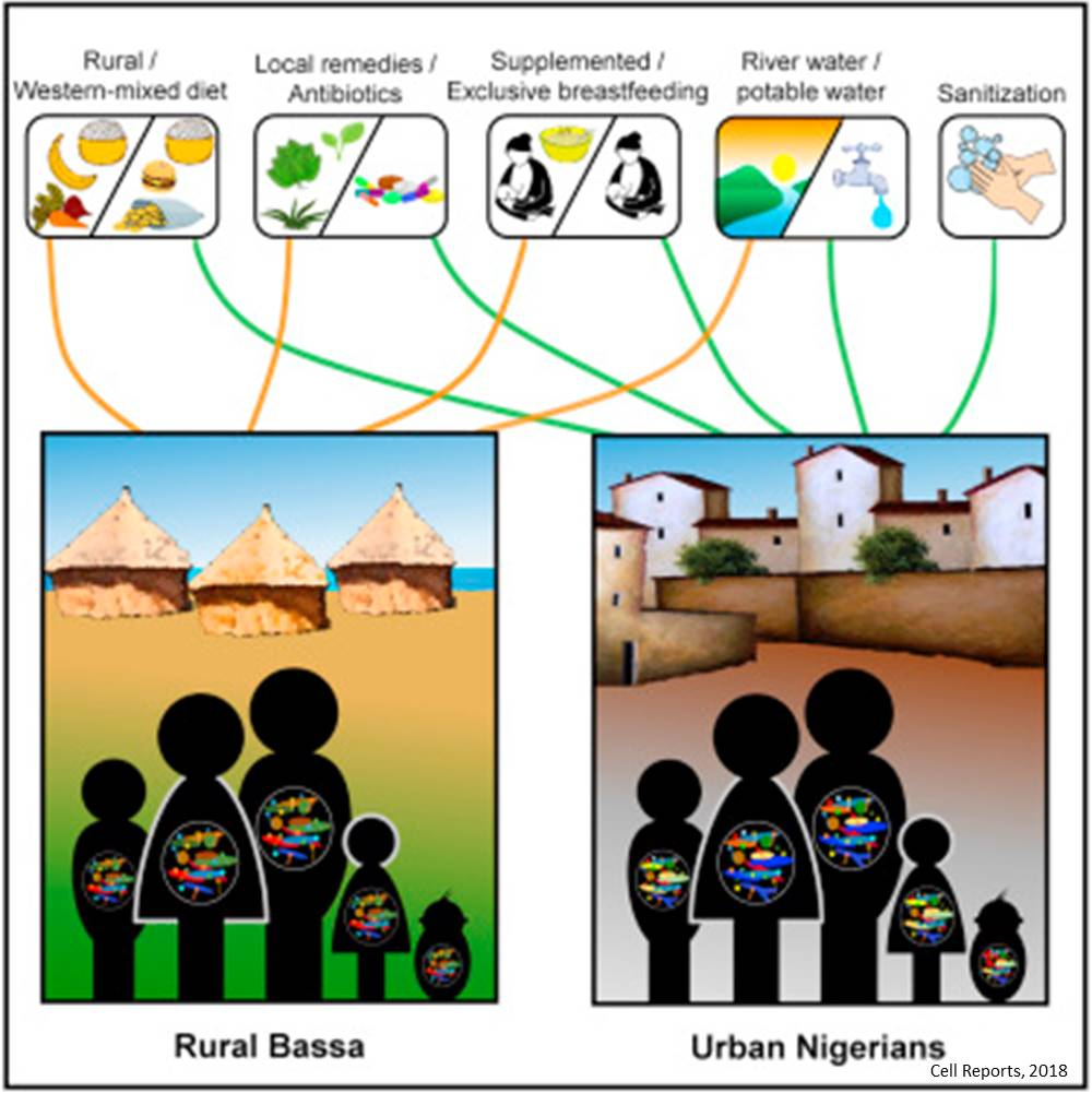 Microbiome differences between urban and rural populations start soon after birth
