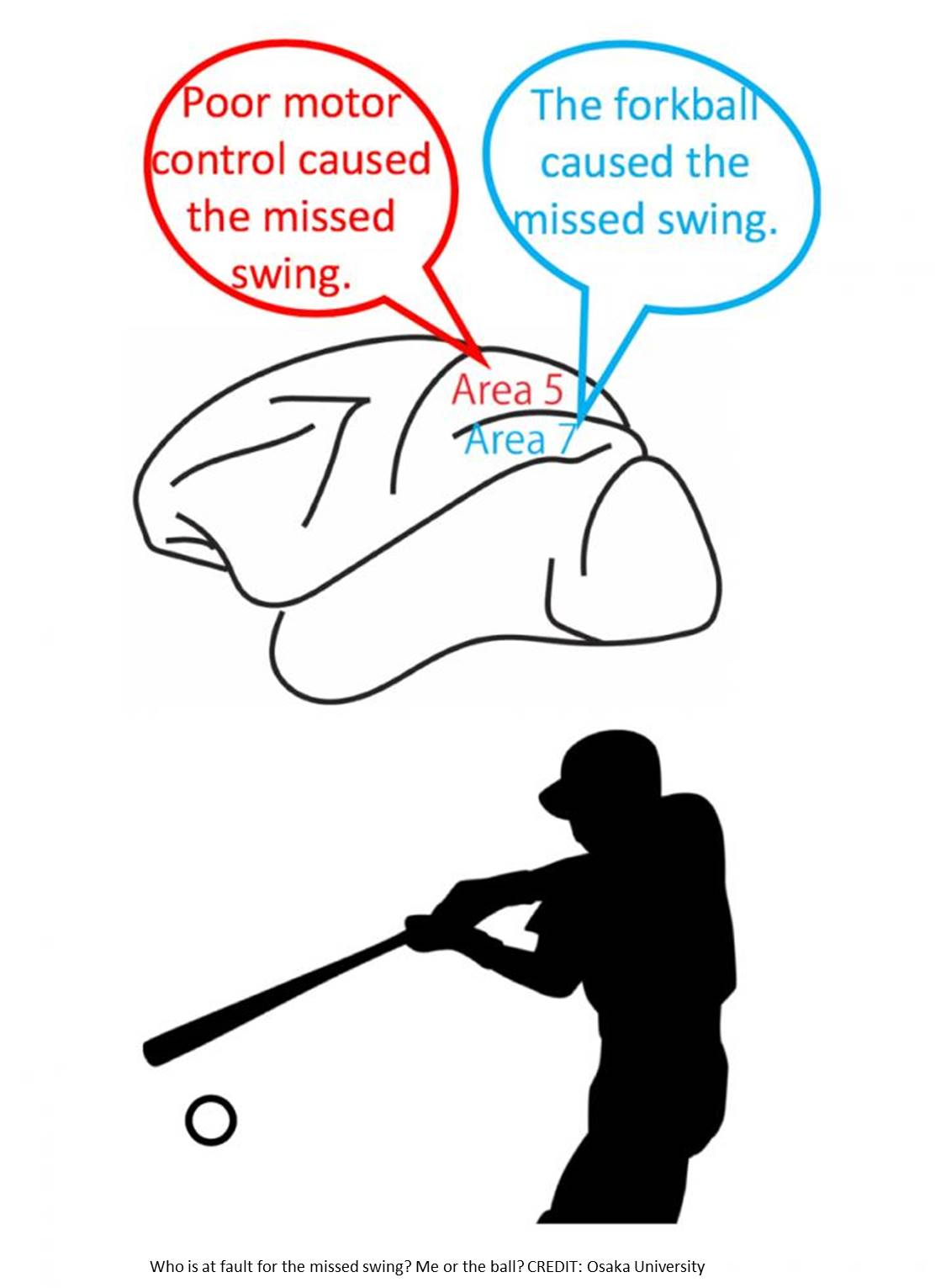 The brains mechanism to distinguish errors and correct them!