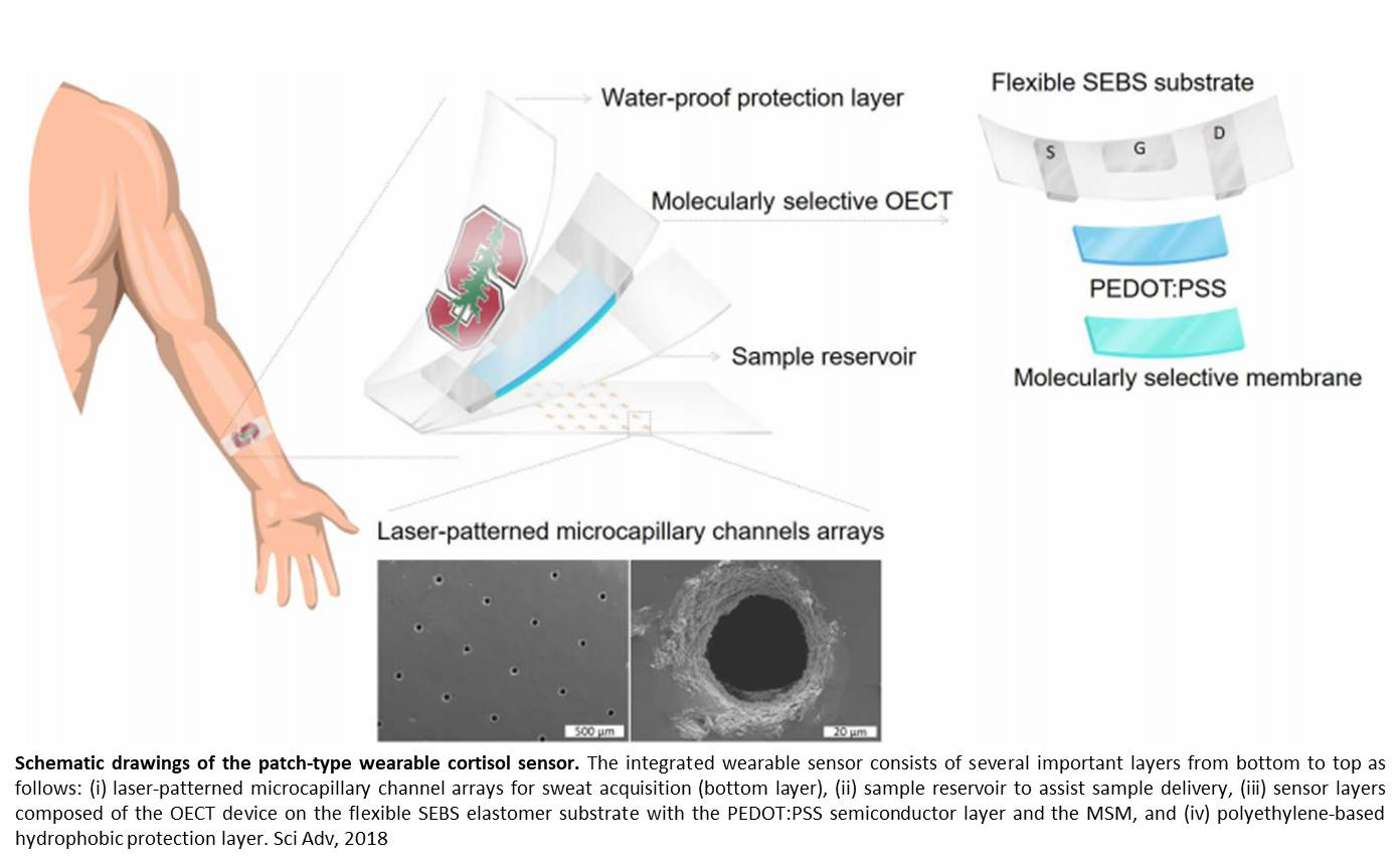 An electrochemical, nano-porous membrane device to monitor stress hormone in the sweat