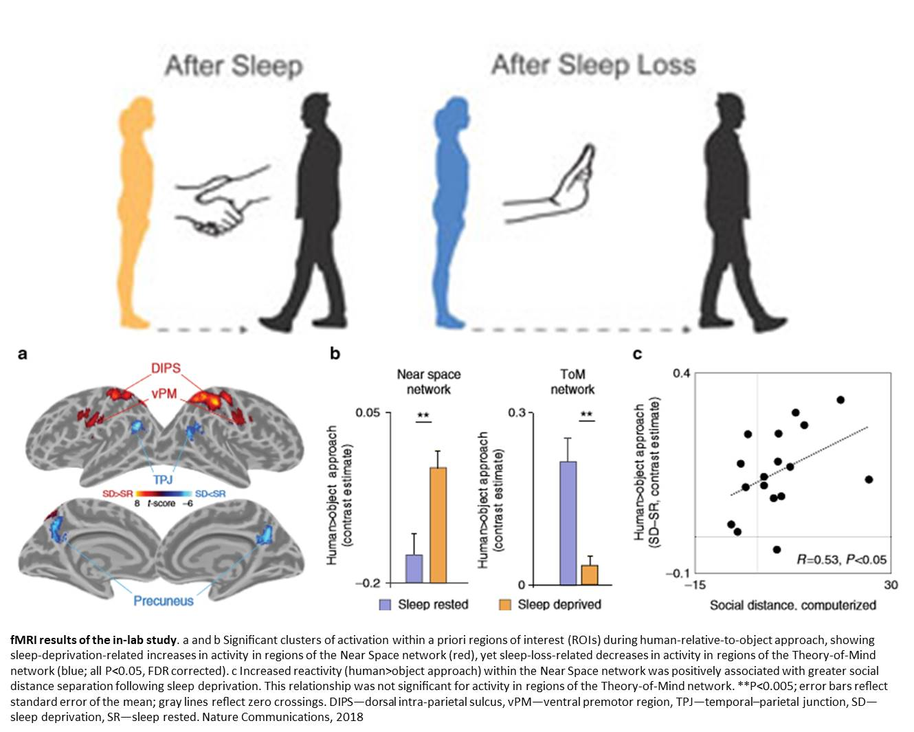 Poor sleep triggers viral loneliness and social rejection