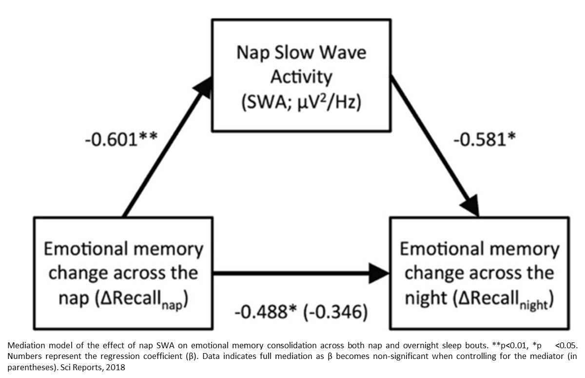 Naps plus sleep may enhance emotional memory in early childhood