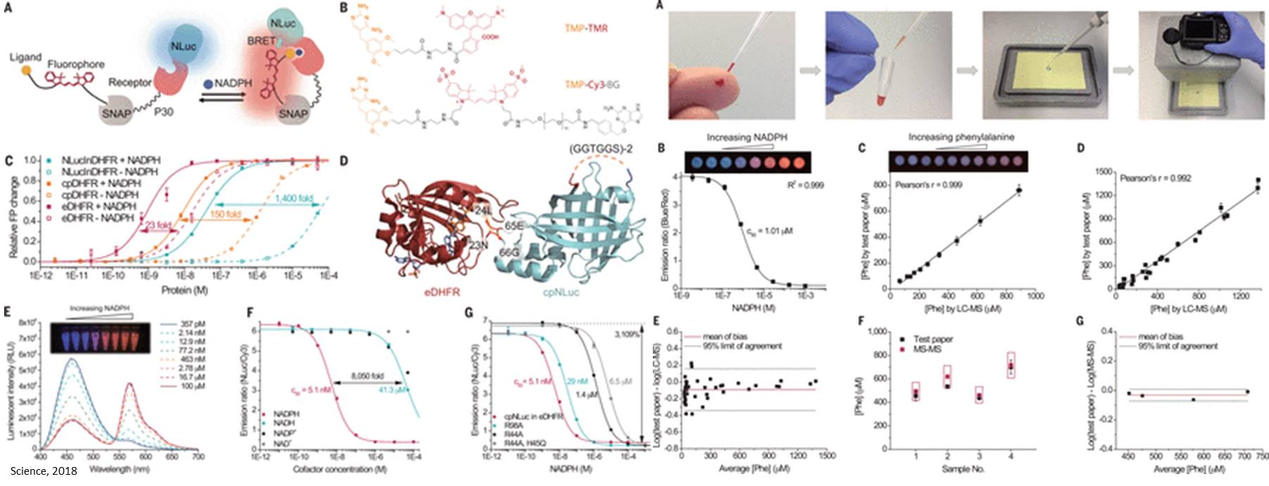 Quick, paper-based method for detecting medically relevant metabolites