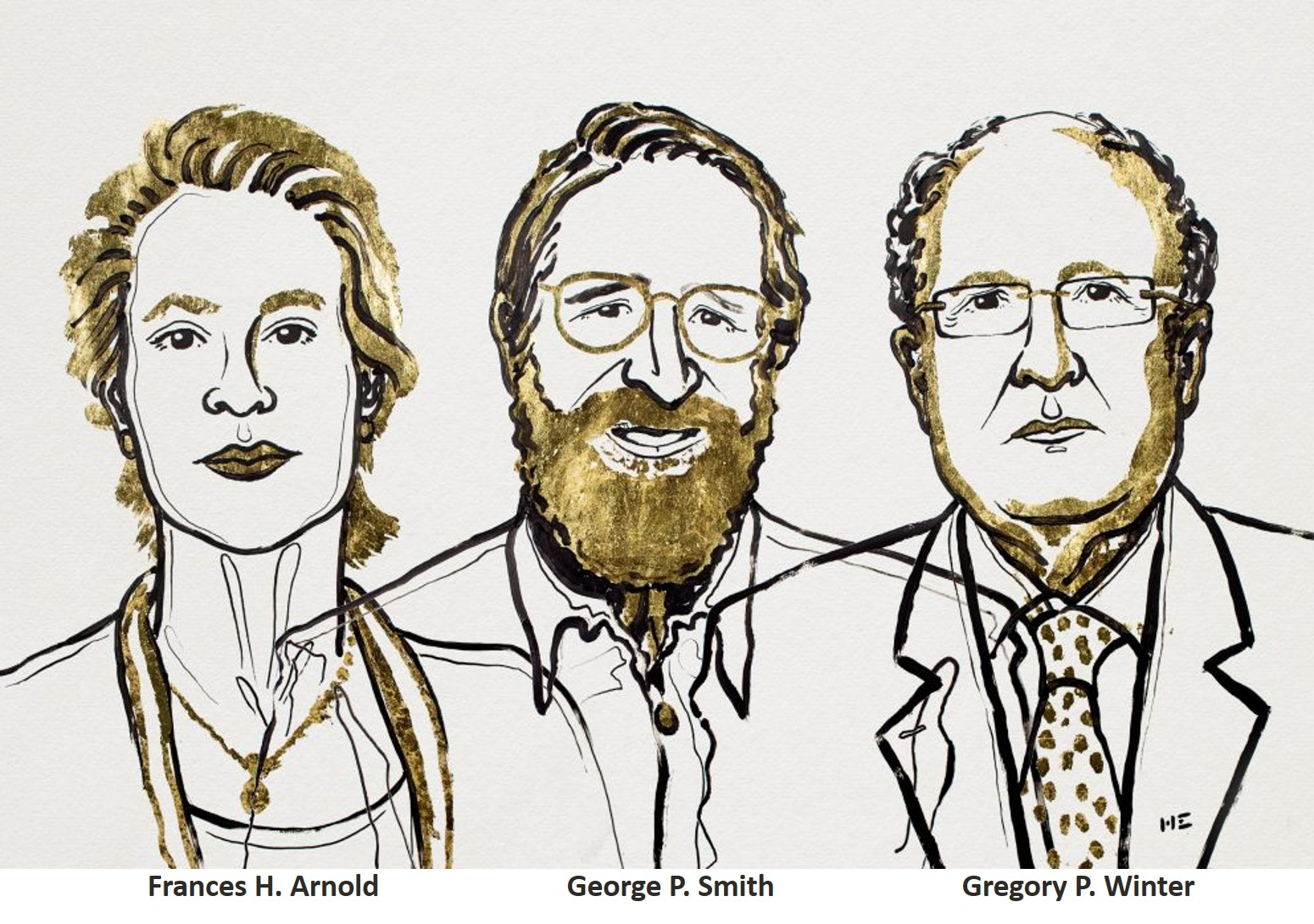 "Nobel Prize for Chemistry goes to ""directed evolution of enzymes and phage display"""