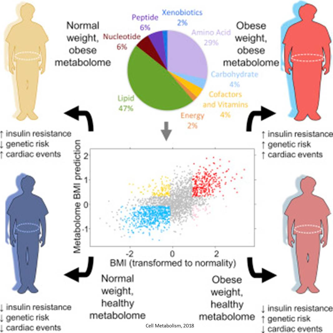 Health risk prediction from metabolome in obese people