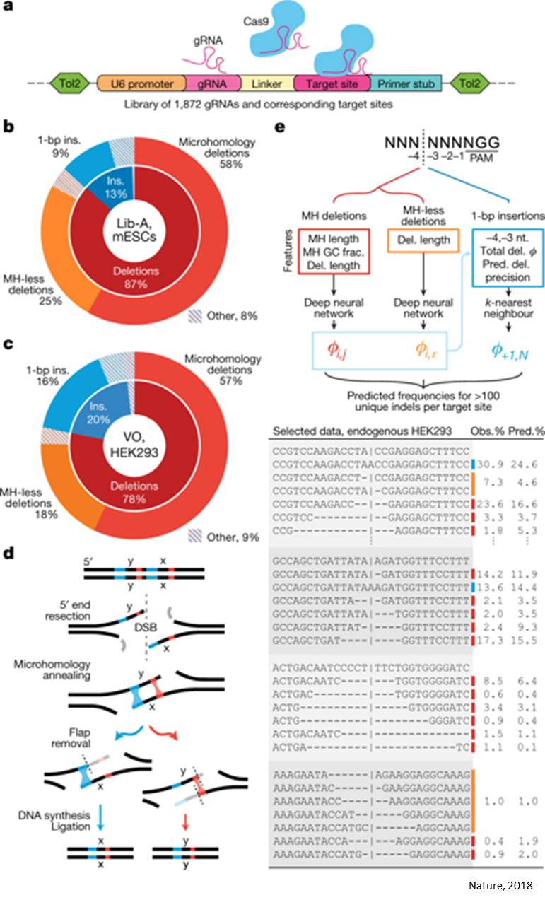 Machine-learning algorithm predicts template-free CRISPR editing of pathogenic variants