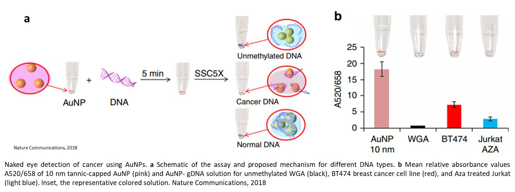 An epigenetic, universal, nano-signature for cancer