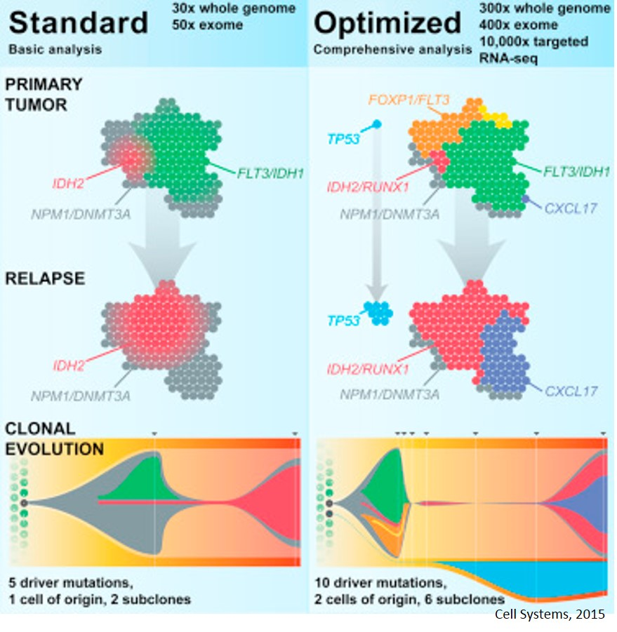 Optimizing Cancer Genome Sequencing and Analysis