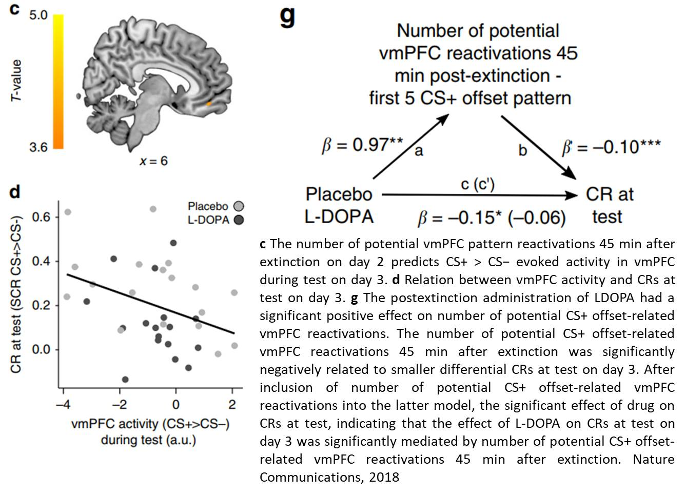 Fear extinction memory retrieval using dopamine