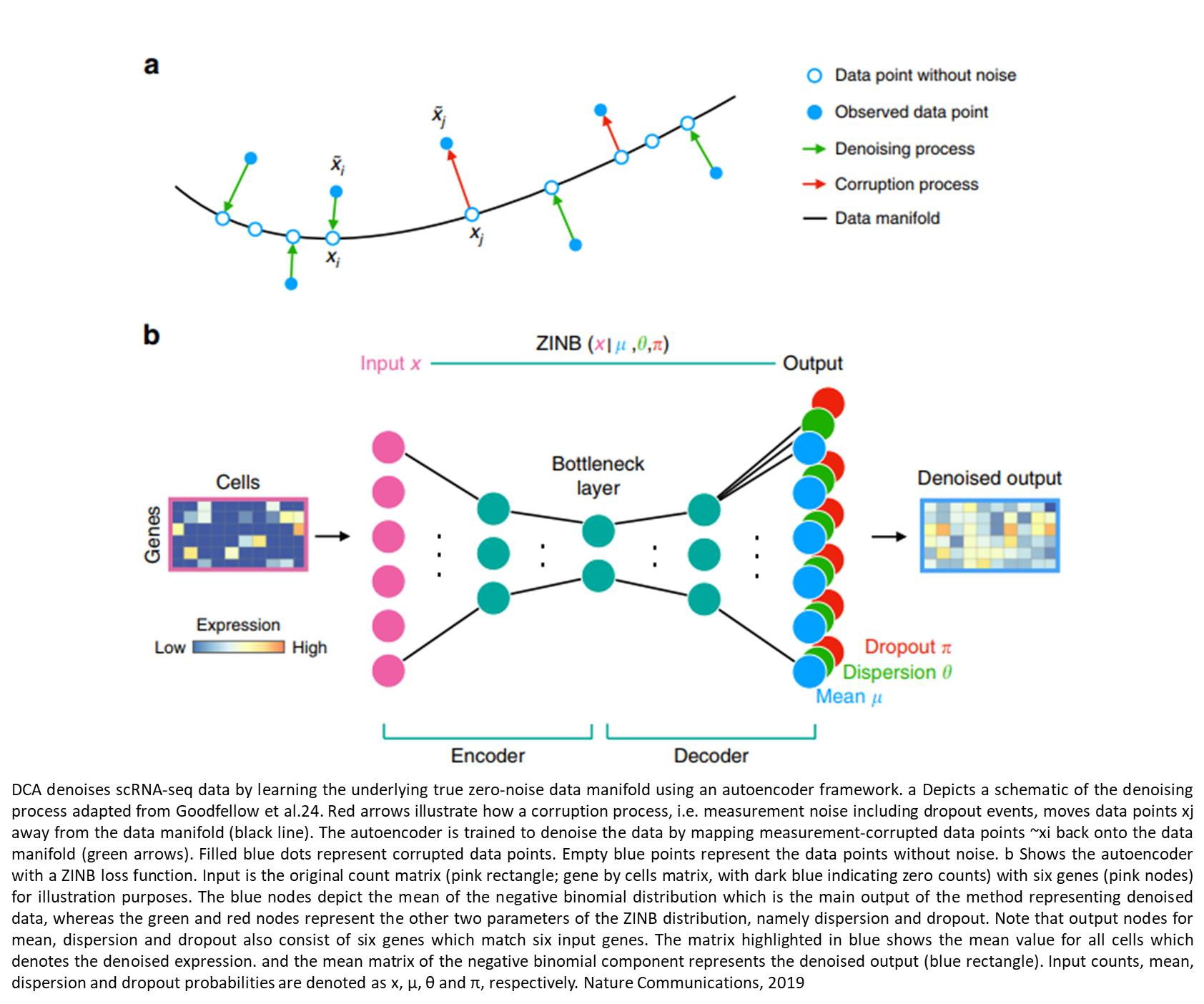 Denoising single-cell RNA-seq using artificial intelligence