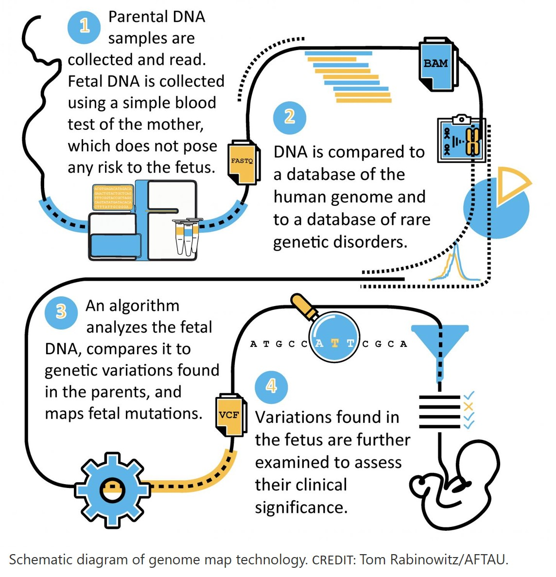 New blood test may map fetal genome for countless mutations