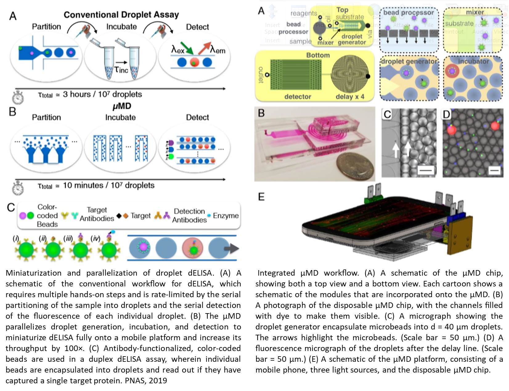 Detecting picogram quantities of proteins in blood using a mobile platform