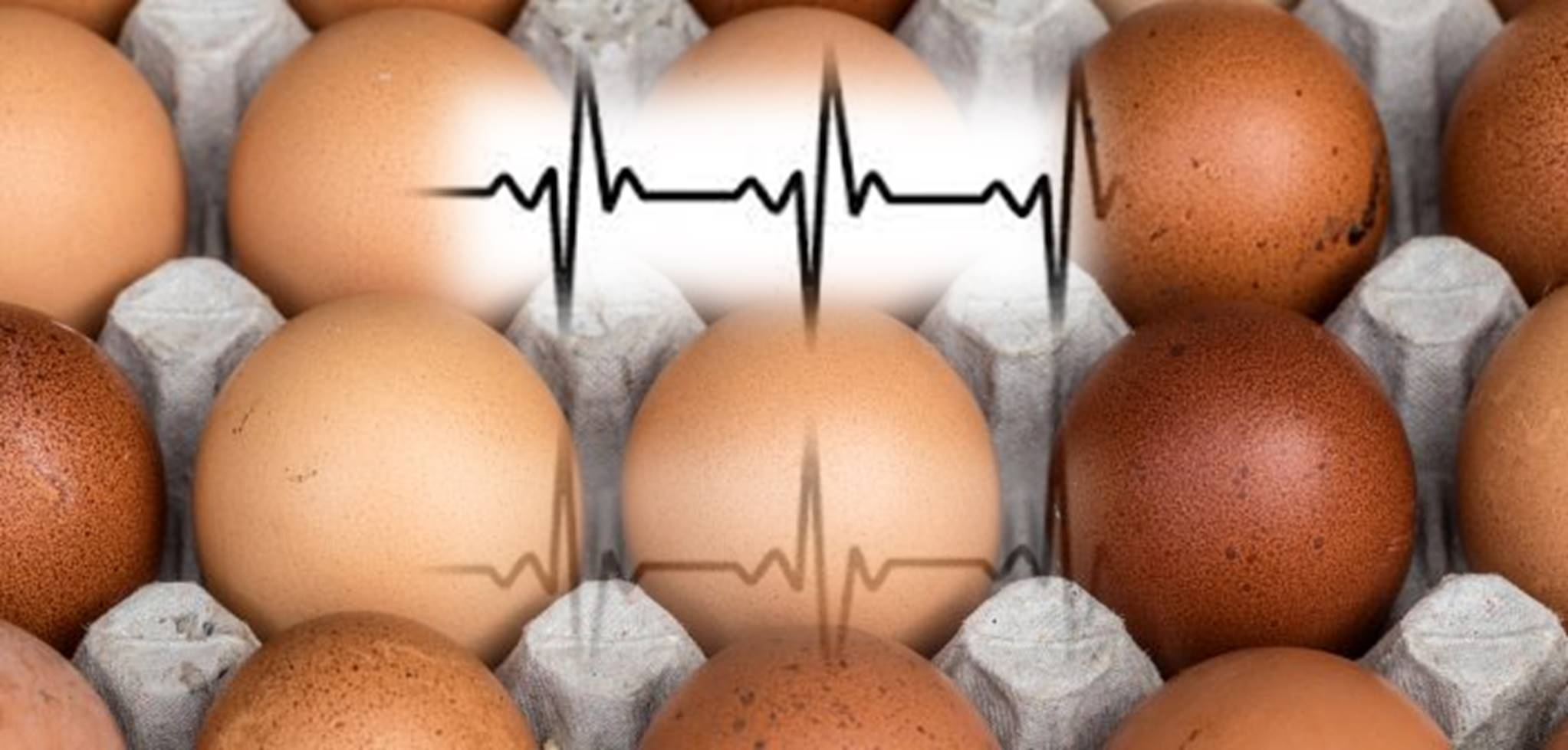 Eating Eggs and Cholesterol Linked to Heart Disease and Death Risk